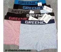 GREENICE new 20/05