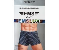 EMS 011