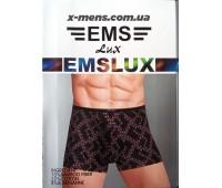 EMS box new