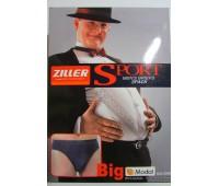 ZILLER (big slip)1