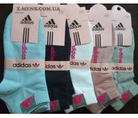 adidas (new)