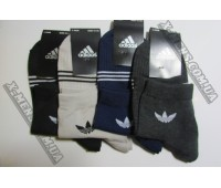 adidas (ukr)1