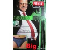 EMS (big)